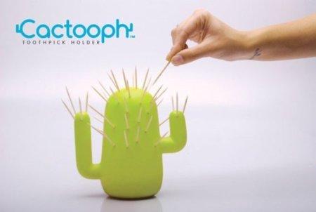 Palillero que luce como un cactus