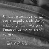 El extraño caso del poeta Rafael Cabaliere, cuando Espasa tiene que desmentir que haya premiado a un bot