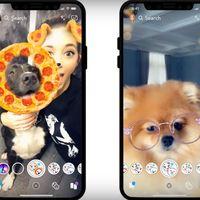 Ahora puedes hacer a tus mascotas más adorables de lo que ya son con los nuevos filtros de Snapchat para perros