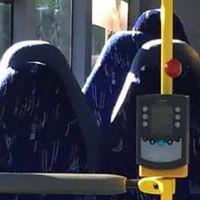 La extrema derecha noruega es tan obtusa que no sabe distinguir un burka de un asiento de autobús