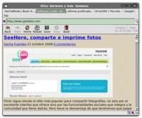 Dillo 2.0: un navegador web ligero y multiplataforma