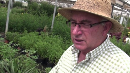 Quién es Josep Pàmies, el agricultor que cree que las plantas curan el cáncer mejor que la quimioterapia
