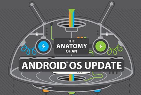 Infografía: La anatomía de una actualización de Android