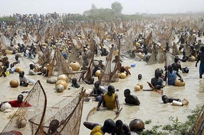 El Festival de la Pesca de Argungu (Nigeria)