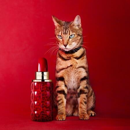 Cacharel Yes I Am Eau De Parfum Collector Edition