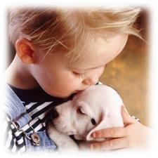 Cómo los niños demuestran el cariño a sus mascotas