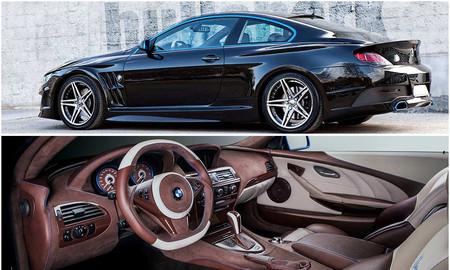 Vilner Studio BMW Serie 6 Coupé Bullshark