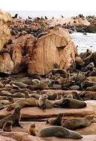 Uruguay: Punta del Este y sus playas de ensueño