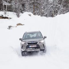 Foto 14 de 137 de la galería subaru-snow-drive-2016 en Motorpasión
