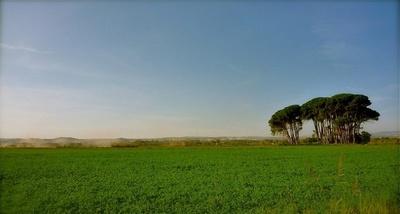Cómo realizar mejores fotografías de paisajes