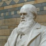 ¿Las pruebas fósiles son un desafío a la fe?
