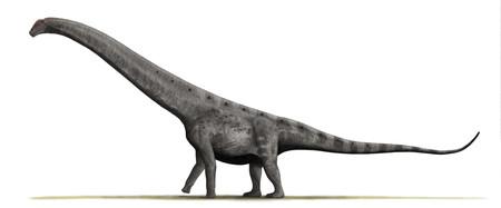 El dinosaurio más grande de todos los tiempos tiene un nombre que no nos suena de nada