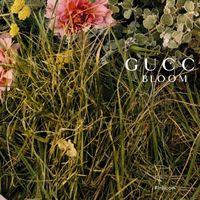 En Douglas tenemos el pack regalo del perfume de moda, Gucci Bloom, con 30% de descuento y envío gratis