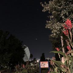 Foto 56 de 77 de la galería iphone-xs-fotografias en Xataka