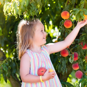 Alergia a las frutas rosáceas, una de las causas más frecuentes de anafilaxia: síntomas y tratamiento