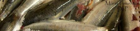 Sardinas en escabeche fritas