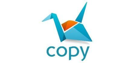 Copy 1