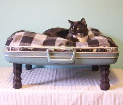 Maleta vieja, cama nueva... para tu gato