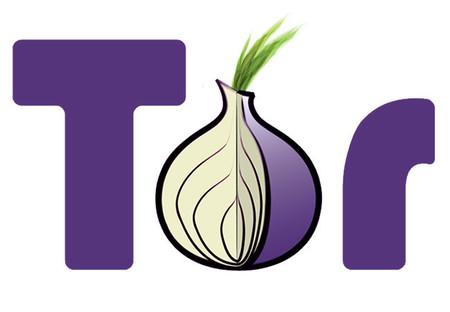 Tor se ve amenazado por Rusia; el país ofrece 111,000 dólares a quien le arrebate el anonimato al servicio