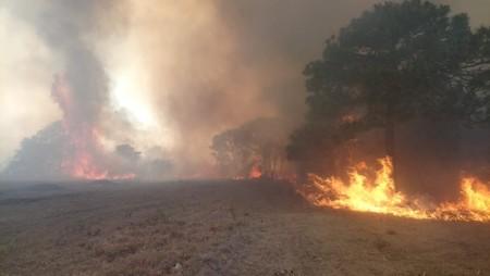 Alerta por contaminantes por incendios en Ciudad de México, Jalisco y Morelos: por qué se recomienda no salir de casa