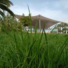 Foto 9 de 16 de la galería fotografias-tomadas-con-el-bq-aquaris-x2-pro en Xataka