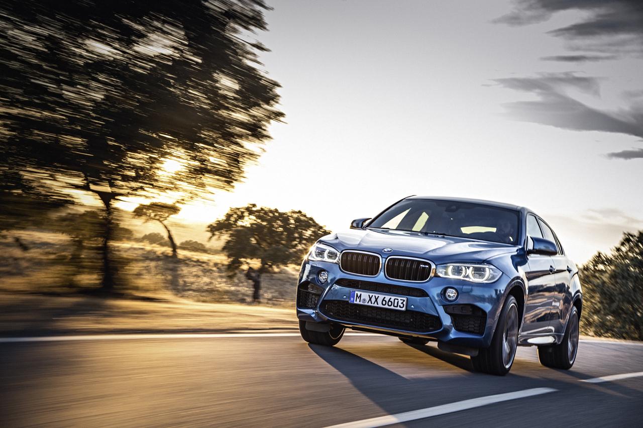 Foto de BMW X5 M y X6 M (2015) (1/22)