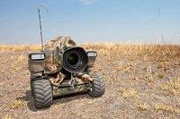 BeetleCam, una cámara a control remoto para fotografiar fauna salvaje