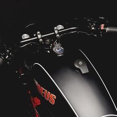 Foto 46 de 99 de la galería kawasaki-w800-deus-ex-machina en Motorpasion Moto