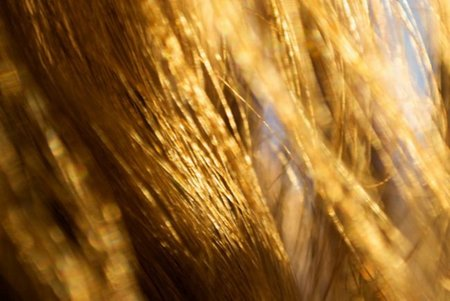 cabello1.jpg