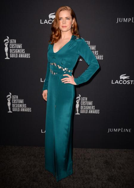 Amy Adams Costume Burke Designer Guild Awards 2014