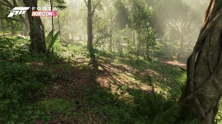 Fh5 Biome Jungle 03 16x9 Wm