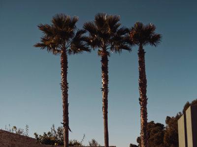El estilo ecléctico de L.A se convierte en la inspiración definitiva de la temporada