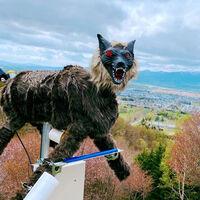 Japón está desplegando un ejército de lobos-robot para ahuyentar a osos y otros animales salvajes