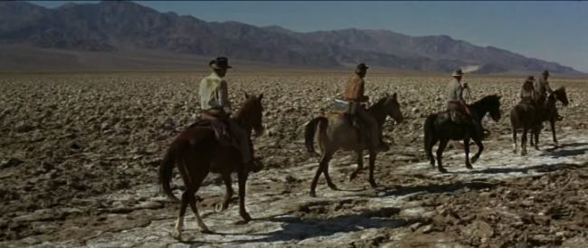 losprofesionales caballos