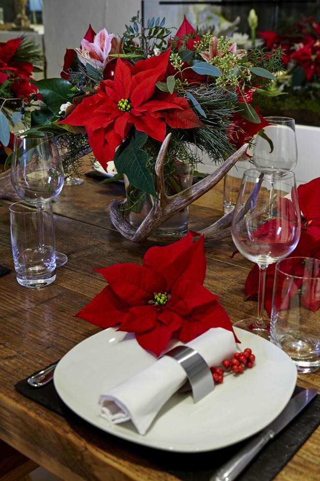 2015 Poinsettia Comedor Clasico Es