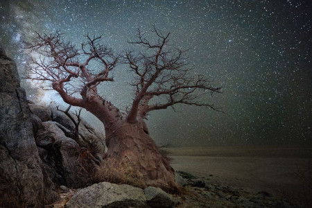 Diamond Nights Beth Moon 9
