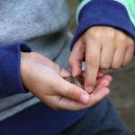 Un niño se atragantó con una moneda en el autobús del cole y la conductora le salvó la vida