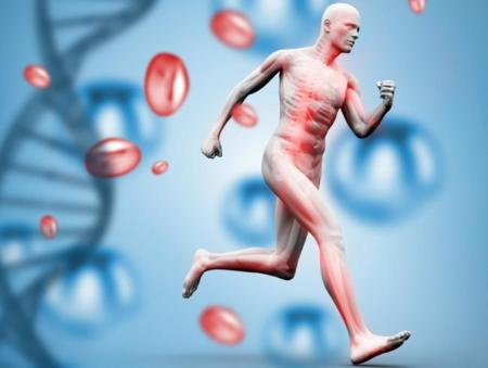 De cómo el ejercicio modifica nuestros genes para que seamos más saludables