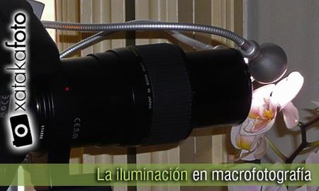 La iluminación en macrofotografía