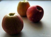 Nuevos recubrimientos comestibles para vegetales