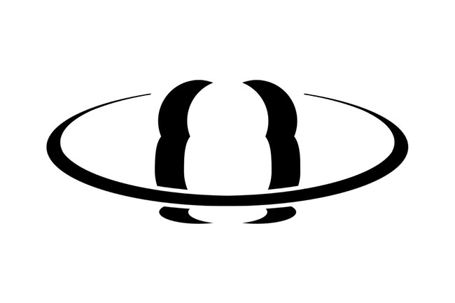 Matroska Logo