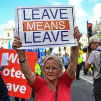 Brexiting: el arte de despedirte de todo el mundo en una fiesta pero no marcharte nunca