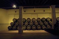 Enoturismo en Jeréz, Capital Europea del Vino durante el 2014