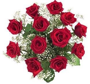 Podar bien tus rosales