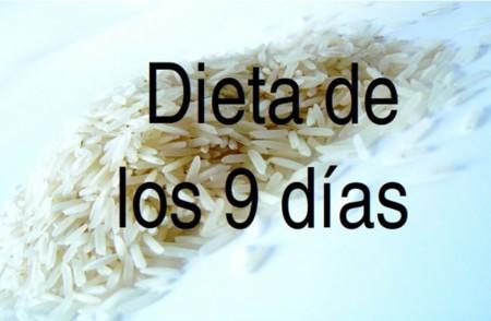 Recetas de arroz para dieta disociada 10 dias