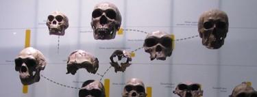El análisis de nuestro genoma mediante inteligencia artificial desvela la huella de un ancestro humano desconocido