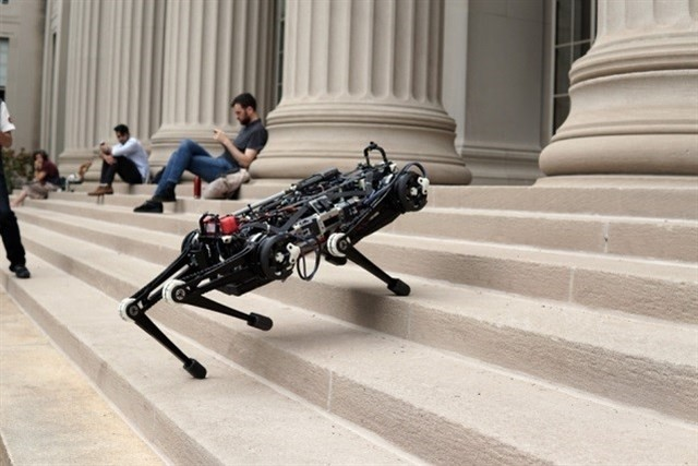 Locomoción ciega: así es como este robot puede desplazarse entre escombros