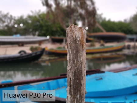 Huawei P30 Pro Retrato 02
