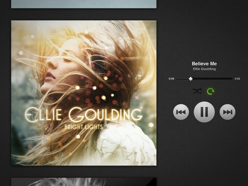 Foto de Spotify en iPad (6/11)