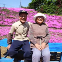 Plantar un enorme jardín de flores para su esposa ciega es la más grande historia de amor